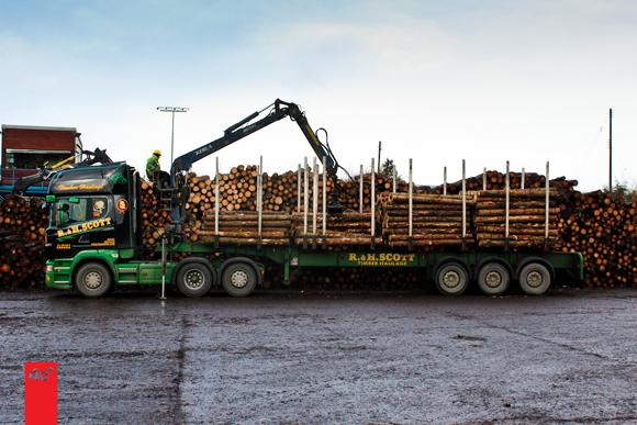 Egger Lumber Lorry